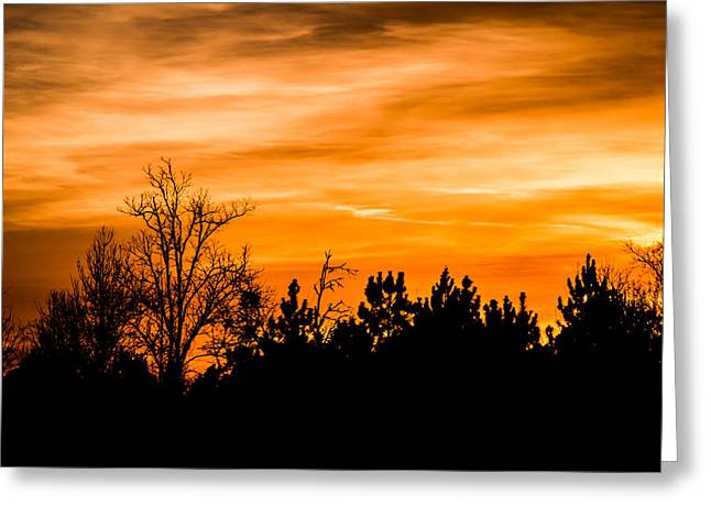 Orange Silhouettes Greeting Card by Shelby Young