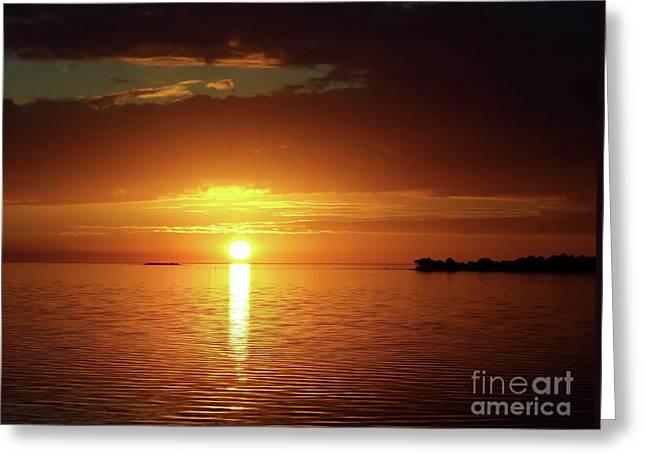 Orange Sky  Greeting Card by D Hackett