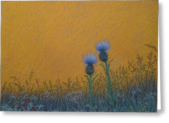 Orange Sky With Thistle Greeting Card