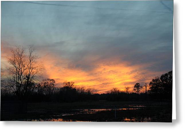 Orange Sunset Greeting Card by Bill Perry