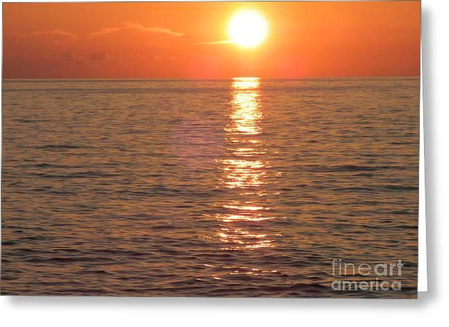 Orange Sunset Greeting Card by Hilton  Woodside