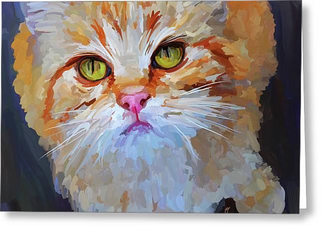 Orange Tabby Cat - Square Greeting Card by Jai Johnson