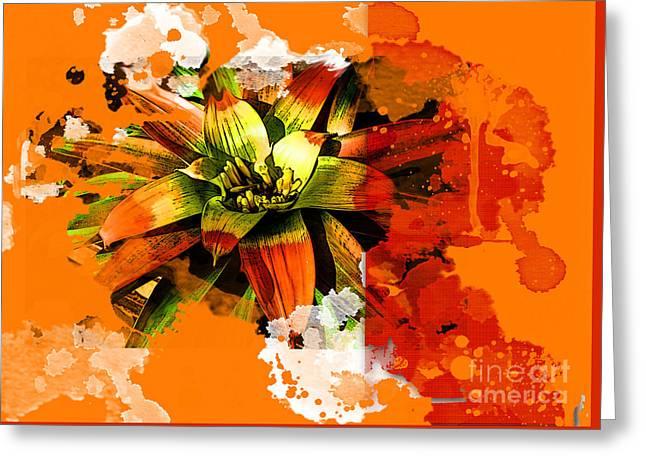 Orange Tropic Greeting Card