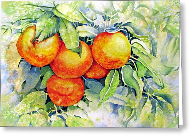Oranges-in-italy Greeting Card by Nancy Newman