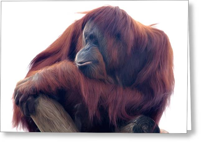 Greeting Card featuring the photograph Orangutan - Color Version by Lana Trussell