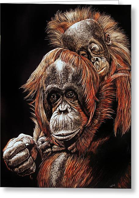 Orangutans Two Greeting Card