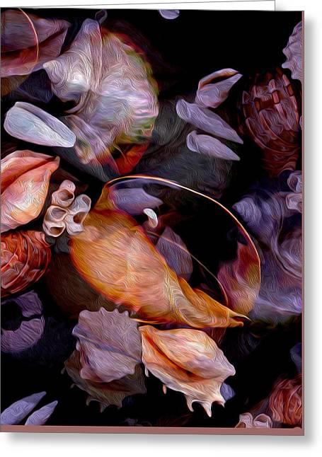Orbiting Seashells Greeting Card