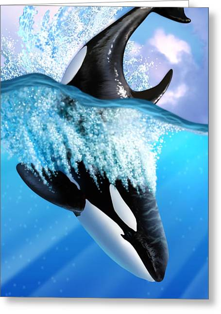 Orca 2 Greeting Card