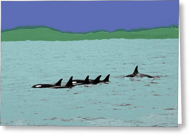 Orca Pod Greeting Card