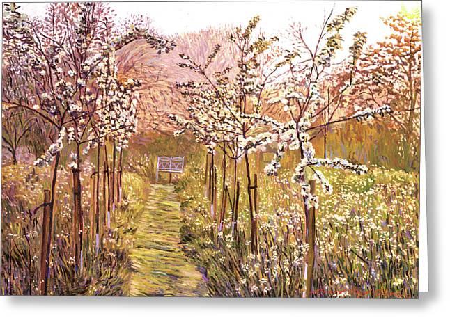 Orchard Morning Greeting Card by David Lloyd Glover