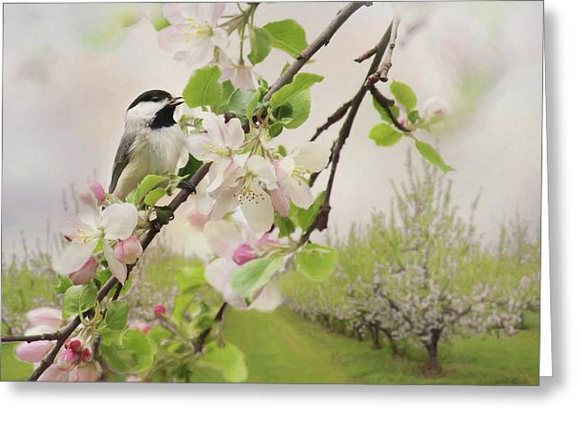 Orchard Visitor 2 Greeting Card by Lori Deiter