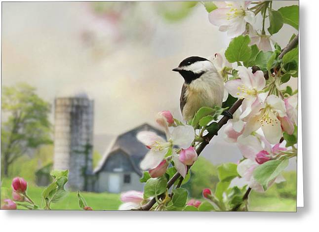 Orchard Visitor Greeting Card
