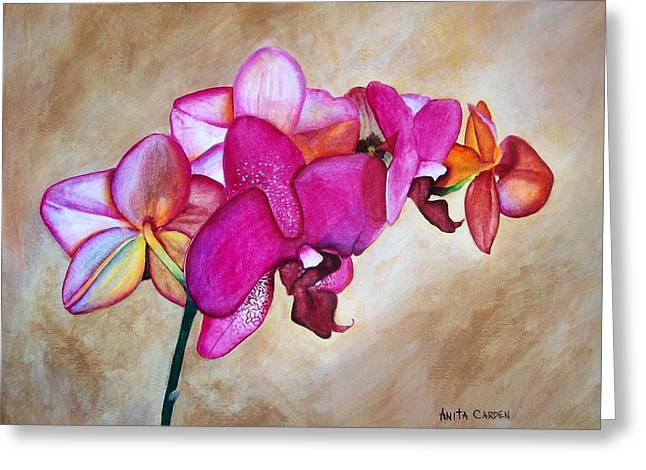 Orchid Greeting Card by Anita Carden