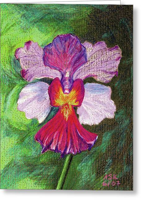 Orchid Greeting Card