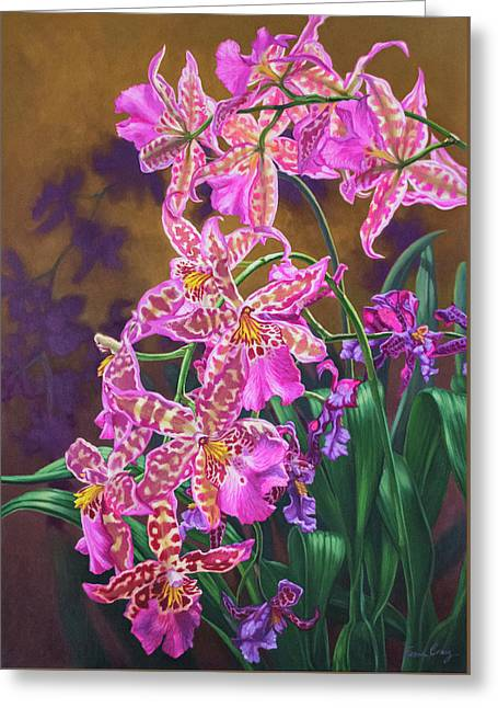 Orchid Fever 3 Miltonia Greeting Card
