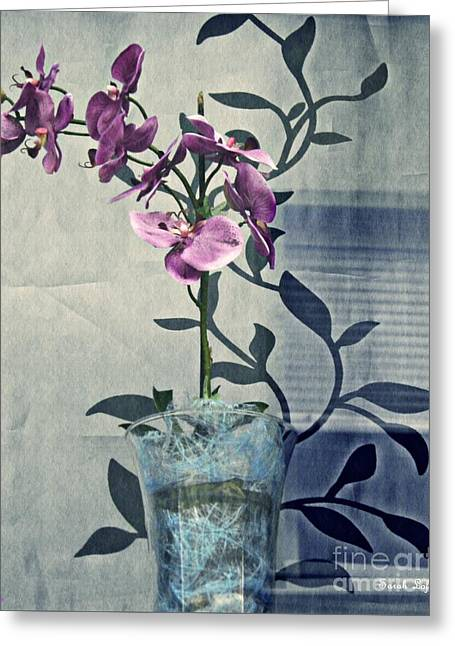 Orchid In The Window Greeting Card by Sarah Loft