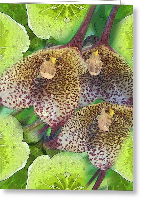 Orchid Monkeys Greeting Card