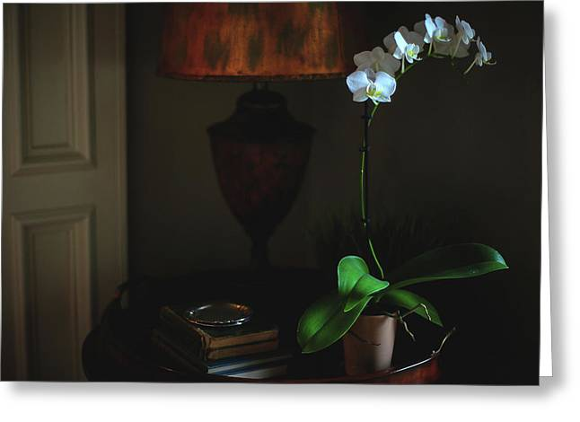 Orchid Morning Greeting Card by Paul Green