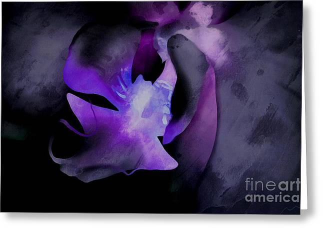 Orchid Of Faith Greeting Card by Krissy Katsimbras