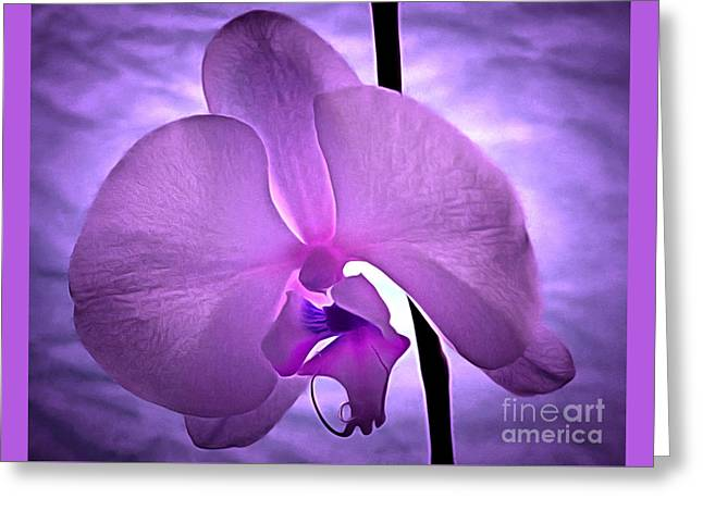 Orchid Of Serenity Greeting Card by Krissy Katsimbras