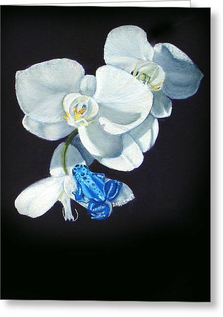 Orchid Treat Greeting Card by Darlene Green