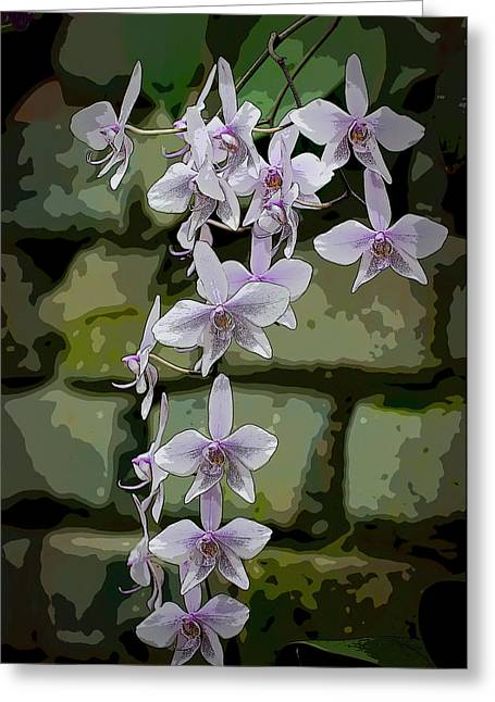 Orchid Waterfall Greeting Card