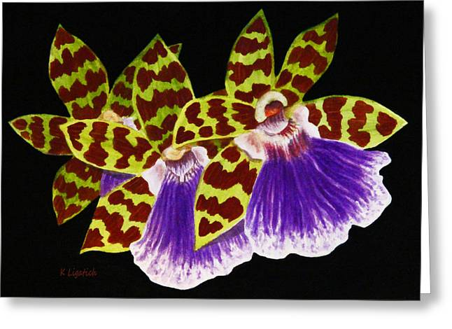 Greeting Card featuring the painting Orchids - Jumping Jacks With Black Background by Kerri Ligatich