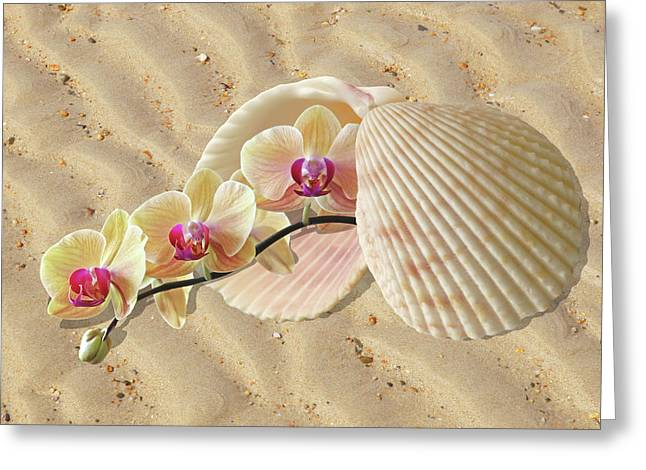 Orchids And Shells On The Beach Greeting Card by Gill Billington