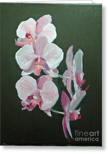 Orchids For Didi Greeting Card