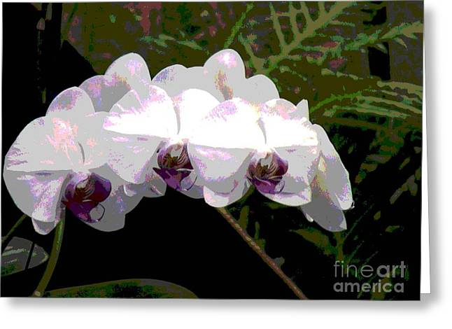 Greeting Card featuring the photograph Orchids Impressionistic by The Art of Alice Terrill