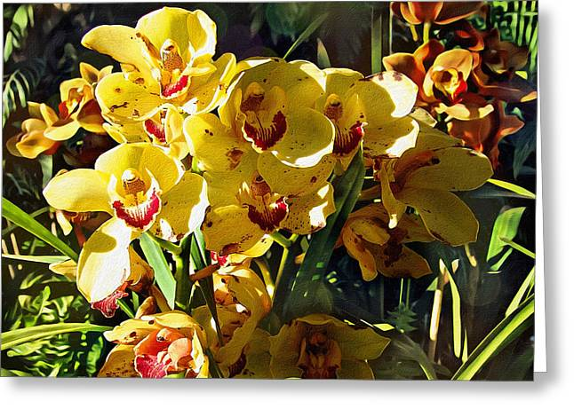 Orchids In Texture Greeting Card