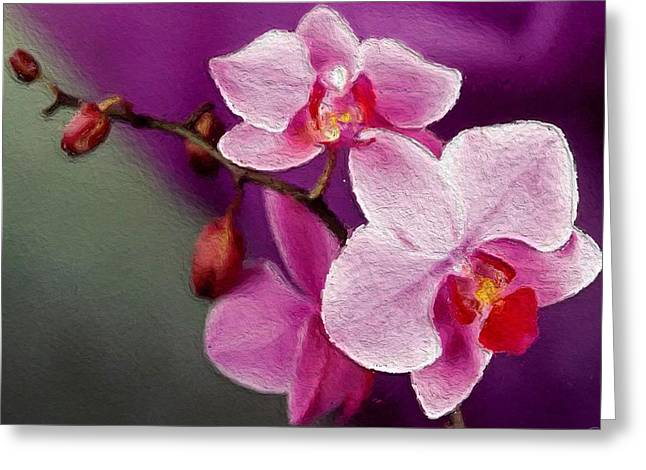 Orchids In Violets Greeting Card by Anthony Fishburne