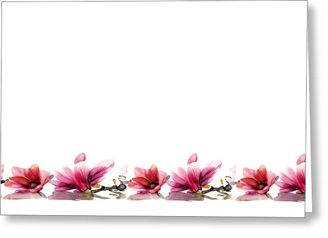 Orchids... Greeting Card by Jacqueline Schreiber