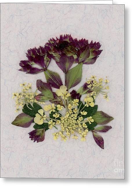 Oregano Florets And Leaves Pressed Flower Design Greeting Card