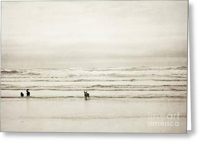 Oregon Beach Dogs Coast Greeting Card