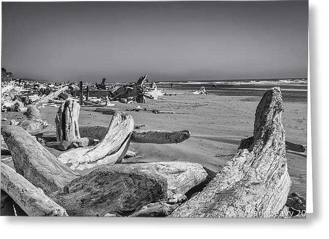 Oregon Beach Driftwood Greeting Card