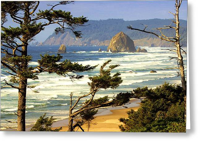 Oregon Coast 15 Greeting Card by Marty Koch