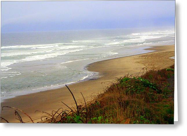 Oregon Coast 3 Greeting Card by Marty Koch