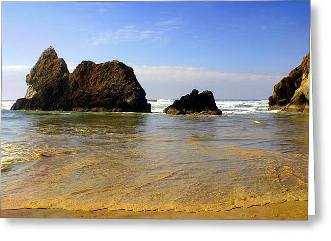 Oregon Coast 9 Greeting Card by Marty Koch