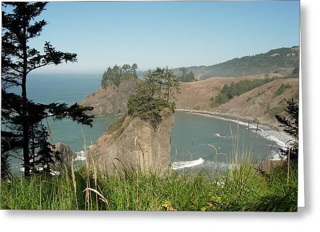 Oregon Coast Near Brookings Greeting Card