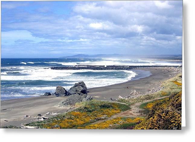 Oregon Coast Greeting Card by Will Borden