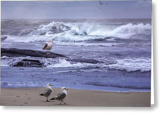 Oregon Coastal Morning Greeting Card