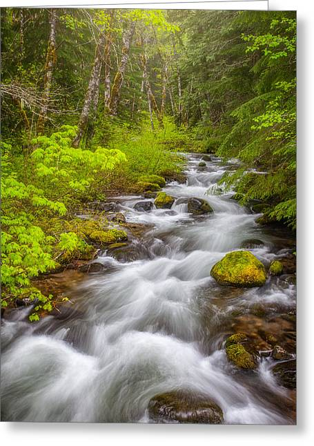 Oregon Creek Greeting Card
