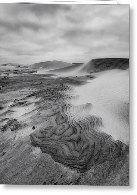 Oregon Dune Wasteland 2 Greeting Card by Ryan Manuel