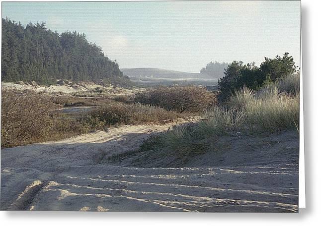 Oregon Dunes 5 Greeting Card by Eike Kistenmacher