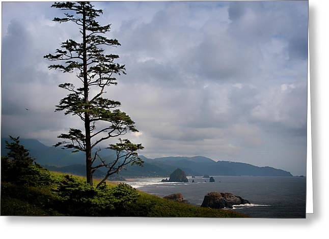 Oregon Ocean Vista Greeting Card