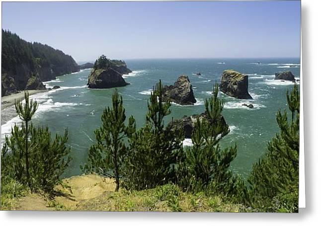 Oregon Seascape Greeting Card by Rob Wilson