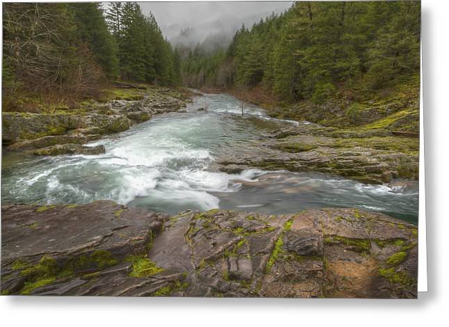 Oregon Umpqua River By Jean Noren Greeting Card by Jean Noren
