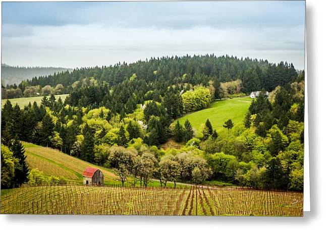 Oregon Wine Country Greeting Card by TK Goforth