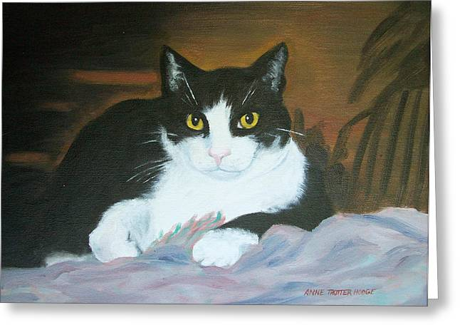 Oreo Greeting Card by Anne Trotter Hodge